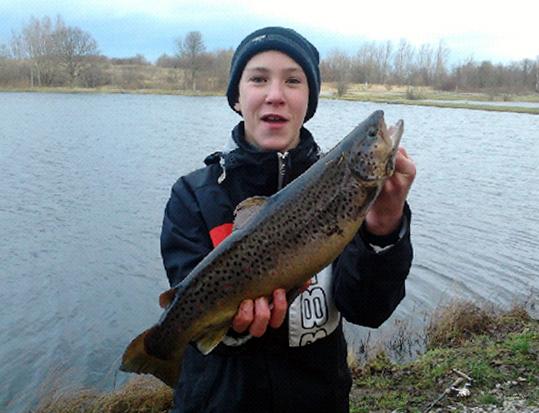 Gott Om Fisk Ledande Datering